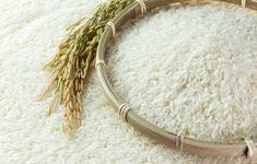 Xuất khẩu lô gạo đầu tiên vào EU theo EVFTA