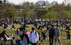 Hàn Quốc cấm giao đơn hàng đồ ăn đến đến các công viên