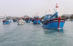 """Gỡ """"thẻ vàng"""" cho thủy sản Việt Nam - Vì sao vẫn khó?"""