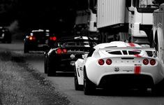 Vì sao phần lớn ô tô có màu đen hoặc trắng?