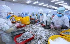 EVFTA không chỉ là nơi xuất con tôm, bán cân gạo