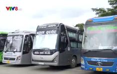 Doanh nghiệp vận tải Đà Nẵng sẵn sàng phục vụ Tết