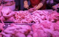 Trung Quốc phát hiện ổ dịch tại nhà máy chế biến thịt gà