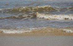 Quảng Ngãi khẩn trương xử lý nước biển có màu bất thường