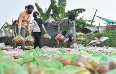 Giải cứu nông sản vùng dịch: Triệu trái tim hướng về Hải Dương