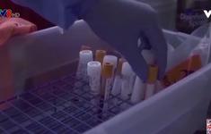 CDC cảnh báo mọi nỗ lực phòng COVID-19 của Mỹ có thể bị biến thể virus xoá sổ