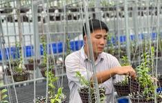 Trương Tuấn Anh chia sẻ bí kíp để thành công trong nuôi trồng hoa lan