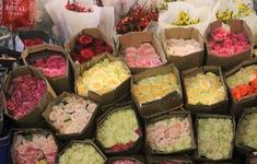 """Tiểu thương chợ hoa lớn nhất TP Hồ Chí Minh lo cảnh """"người đông, khách vắng"""" dịp lễ 8/3"""