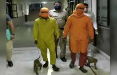Bị bắt vì dùng khỉ để trộm tiền tại Ấn Độ