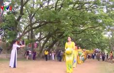Lễ hội độc đáo trong lòng thành phố hoa vàng