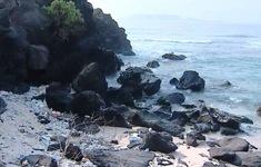 Ít nhất 30 tấn rác thải phát sinh mỗi ngày tại Đảo Lý Sơn