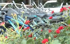 TP. Hồ Chí Minh thí điểm xe đạp công cộng trong vòng 1 năm