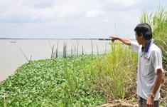 Gần 3.000 tỷ đồng tiền đấu giá mỏ cát trên sông Tiền và sông Hậu: Bình thường hay bất thường?