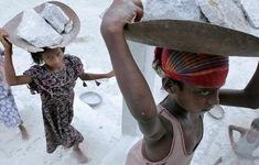 Cứ 10 trẻ em trên thế giới thì có 1 em phải lao động kiếm sống