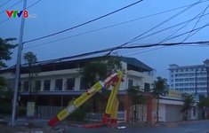 Thiệt hại ban đầu do bão số 2 gây ra tại Thanh Hóa