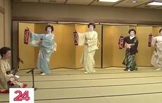 Nhiều nghệ sĩ Geisha Nhật Bản có nguy cơ bỏ nghề vì dịch bệnh