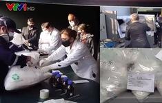 Tiêu hủy lượng ma túy cực lớn tại Peru