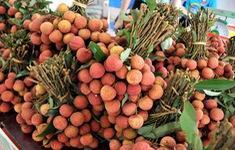 Vải thiều Việt Nam được yêu thích tại thị trường Pháp
