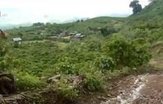 Góp 200 triệu đồng để bê tông hóa, người dân bức xúc vì đường bị đào xới