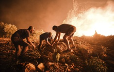 Cháy rừng ở Thổ Nhĩ Kỳ: Số nạn nhân thiệt mạng tăng lên 8 người, du khách sơ tán khẩn cấp