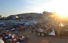 Quảng Ngãi cho phép các cảng cá do Nhà nước quản lý hoạt động trở lại