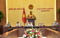 Sẽ trình Quốc hội quyết định việc tổ chức phiên tòa trực tuyến