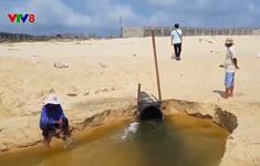 Phú Yên: Làm rõ việc các doanh nghiệp nuôi tôm thải ra biển An Hòa Hải