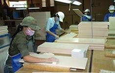 Đề xuất hạn chế đầu tư nước ngoài mặt hàng gỗ dán, tủ bếp