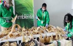 Colombia tịch thu lô hàng 3.500 vây cá mập