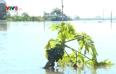 Nghệ An: Phòng chống dịch bệnh sau mưa lũ