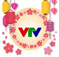 [INFOGRAPHIC] Đặc sắc các chương trình Tết Nguyên đán Mậu Tuất trên sóng VTV