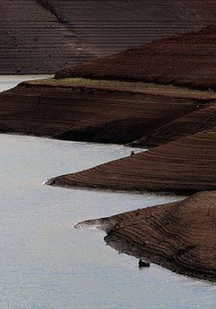 Bang California: Hạn hán nghiêm trọng  đe dọa mùa Halloween
