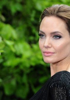 Mải làm đạo diễn, Angelina Jolie quên cả…ăn
