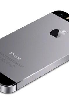 Phiên bản iPhone 5S được ưa chuộng nhất