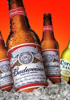Dán tem lên sản phẩm bia: Chi phí lớn, hiệu quả thấp