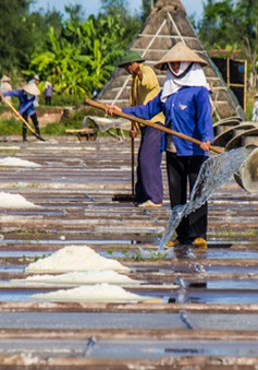 Diêm dân Nam Định mong tìm đầu ra cho hạt muối