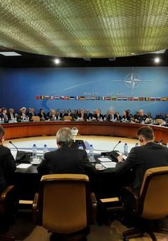 Đức đề nghị lập kênh đối thoại mới với Nga