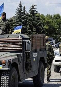 Ukraine: Con đường cải cách đầy chông gai