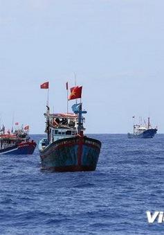 Khẩn trương tìm tàu SUNRISE 689 cùng 18 thuyền viên mất liên lạc