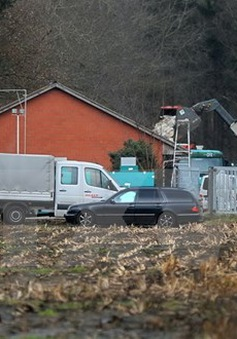 Chủng cúmH5N8 xuất hiện trong trại nuôi gà ở Bắc Italy