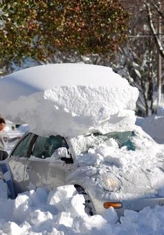 Mỹ: Tập trung khắc phục hậu quả của bão tuyết