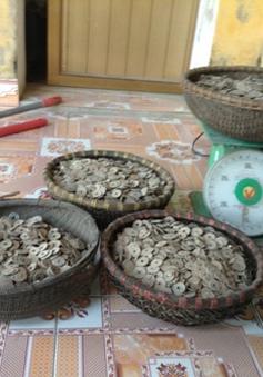 Hà Nam: Đào đất xây bể nước, phát hiện hũ tiền cổ hơn 50 kg