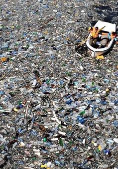 Phân loại và xử lý rác thải và câu chuyện... Tấm – Cám