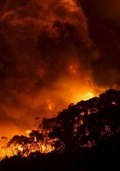 Australia: Cháy rừng lớn do sét đánh