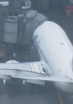 Máy bay hạ cánh khẩn vì nhân viên ngủ ở khoang hàng