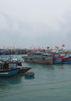 Các tỉnh miền Trung kêu gọi tàu thuyền tránh trú bão Melor