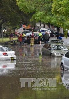 Australia: Bão lớn kèm lốc xoáy tại Sydney