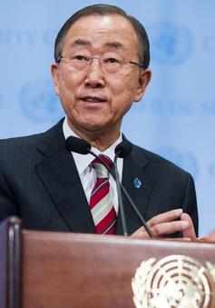 Liên Hợp Quốc kêu gọi biến cam kết COP 21 thành hành động
