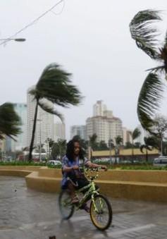 Ít nhất 2 người thiệt mạng khi bão Koppu đổ bộ vào Philippines
