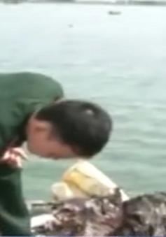 Quảng Ngãi: Bắt giữ tàu vận chuyển 10.000 tấn rác thải nguy hại